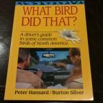 bird poop art 339